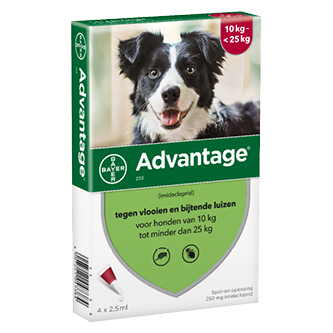 Advantage hond 250-4